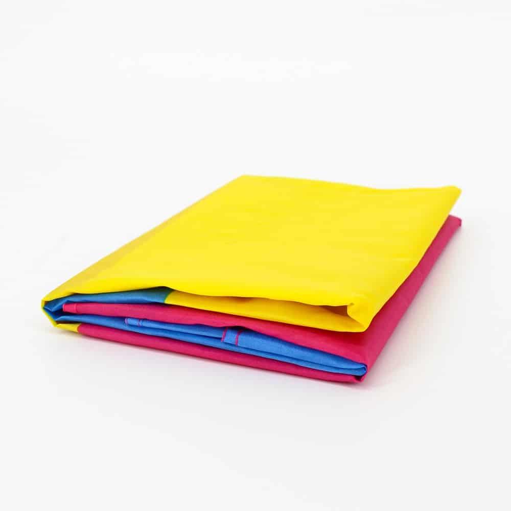 Pink Yellow Blue Pan Pride Flag
