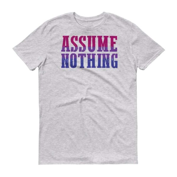 Assume Nothing Bisexual Pride Grey Tshirt