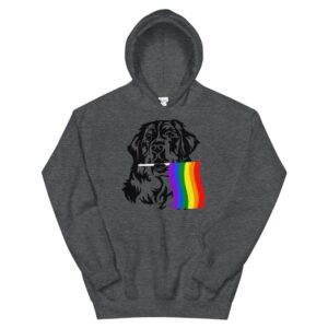St. Bernard Dog Rainbow Gay Pride Hoodie