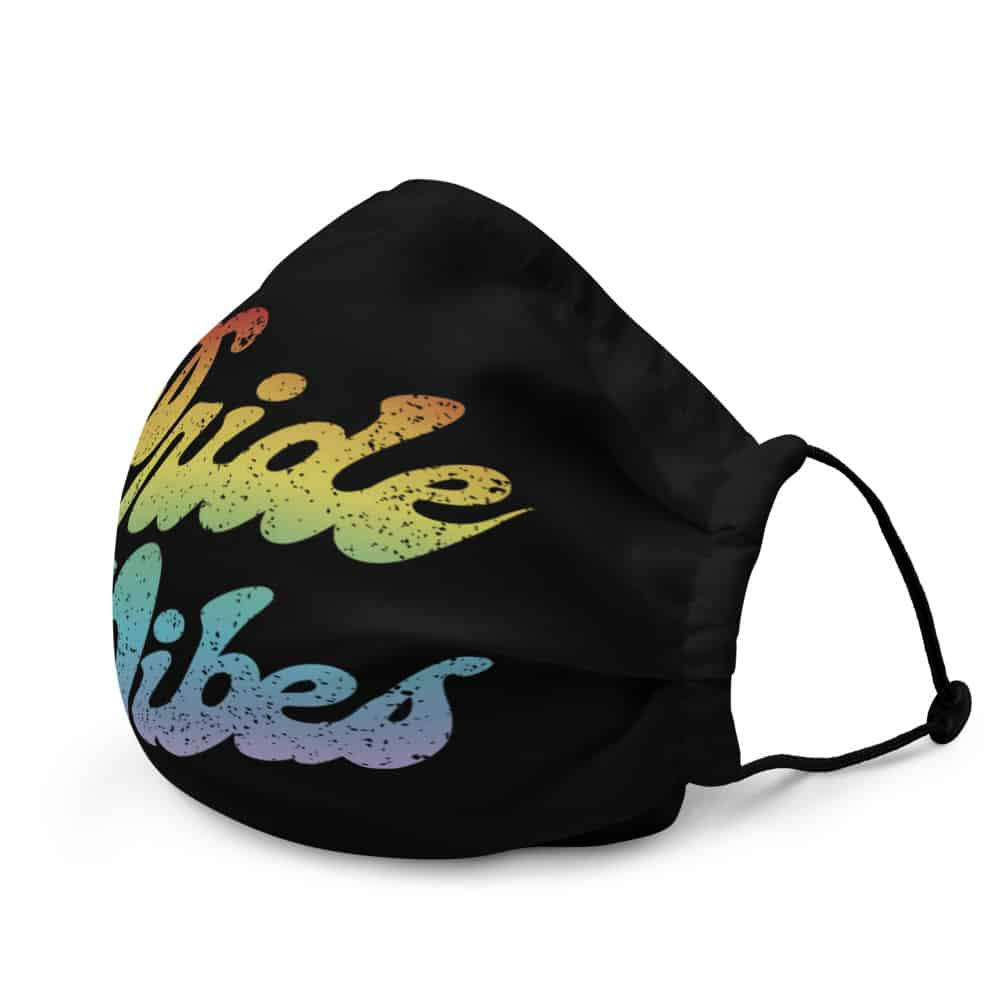 LGBTQ Retro Pride Vibes Face Mask